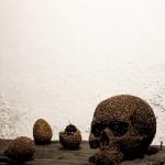 119-mattia-trotta-artista-scultore-opere-in-filo-metallico-di ferro-cerchio-perfetto