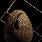 29-mattia-trotta-artista-sculture-filo-metallico-ferro-bronzo-alluminio-rame-ovid-devoid-uovo-cosmico
